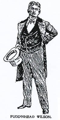 Literary Paper on Puddn Head Wilson by Mark Twain Essay